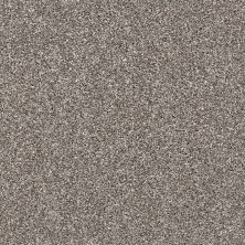 Shaw Floors Value Collections Xz141 Net Tree House 00700_XZ141
