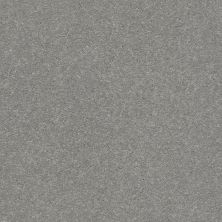 Shaw Floors Value Collections Xz155 Net Dusty Trail 00503_XZ155