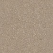 Shaw Floors Value Collections Xz161 Net Raw Lumber 00102_XZ161