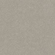Shaw Floors Value Collections Xz161 Net Greige 00106_XZ161