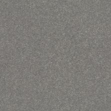 Shaw Floors Value Collections Xz161 Net Taupe Stone 00502_XZ161