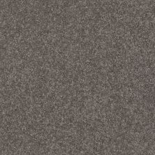 Shaw Floors Value Collections Xz161 Net Pewter 00701_XZ161