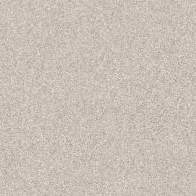 Shaw Floors Value Collections Xz163 Net Desert Light 00121_XZ163