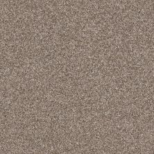 Shaw Floors Value Collections Xz163 Net Fox Hollow 00722_XZ163