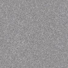 Shaw Floors Roll Special Xz166 Arctic Shadow 00521_XZ166