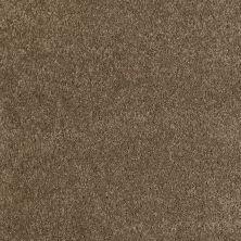 Anderson Tuftex Classics Emotions Phoenix Fossil 00536_Z6582