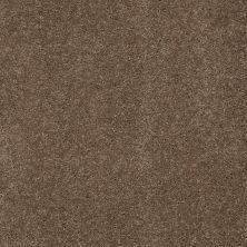 Anderson Tuftex So Amazing Phoenix Fossil 00536_Z6583