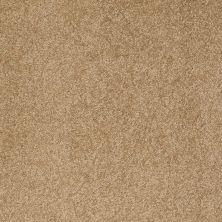 Anderson Tuftex Sweet Dreams Oak Plank 00274_Z6584