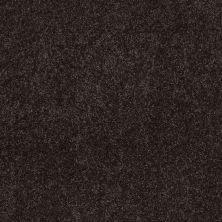 Anderson Tuftex Sweet Dreams Before Dark 00558_Z6584
