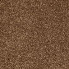 Anderson Tuftex Sweet Dreams Vintage Brown 00775_Z6584