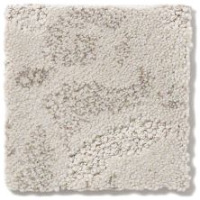 Anderson Tuftex Damask Gray Dust 00522_Z6793