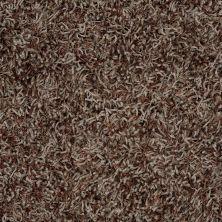Anderson Tuftex Bling Portobello 00575_Z6809