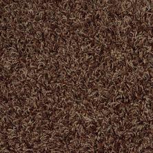 Anderson Tuftex Bling Bronzing 00777_Z6809