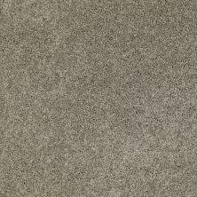 Anderson Tuftex Classics Serendipity I Wild Dove 00555_Z6814