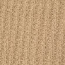 Anderson Tuftex Classics Casual Mood Winter Wheat 00724_Z6820