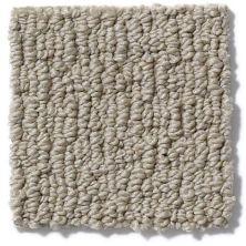 Anderson Tuftex Classics Casual Mood Limestone 00732_Z6820