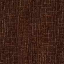 Anderson Tuftex Del Sur Coffee Bean 00779_Z6830
