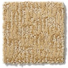 Anderson Tuftex Alante Fine Sand 00222_Z6831