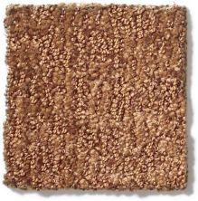 Anderson Tuftex Alante Burnt Almond 00765_Z6831