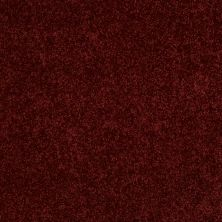 Anderson Tuftex Classics Forever Fire Brick 00888_Z6852