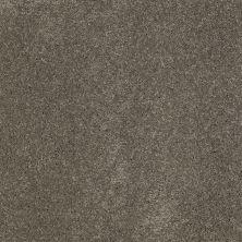 Anderson Tuftex Fantasy Steel Wool X 00556_Z6853