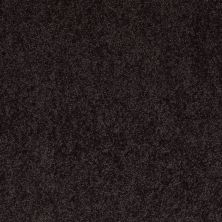 Anderson Tuftex One Sweet Day Wild Plum 00999_Z6854