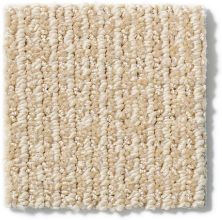 Anderson Tuftex Classics Something New Blush Beige 00161_Z6861