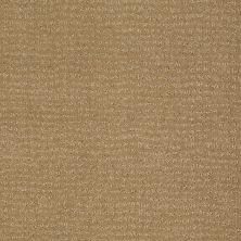 Anderson Tuftex Classics Vibe Sahara Sun 00273_Z6863