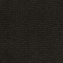 Anderson Tuftex Classics Vibe Cilantro 00349_Z6863