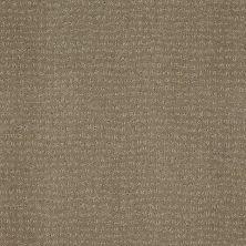 Anderson Tuftex Classics Vibe Greige 00575_Z6863