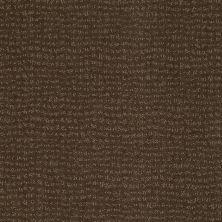 Anderson Tuftex Classics Vibe Shitake 00739_Z6863