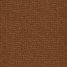 Anderson Tuftex Vibe Roman Brick 00765_Z6863
