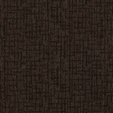 Anderson Tuftex Mystic Charm Dark Coffee 00779_Z6864
