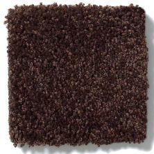 Anderson Tuftex Embrace Chestnut 00778_Z6865