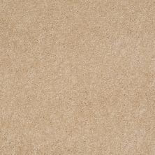 Anderson Tuftex Ravishing Nevada Sand 00162_Z6866