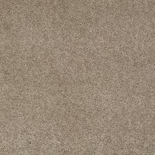 Anderson Tuftex Ravishing Driftwood 00753_Z6866