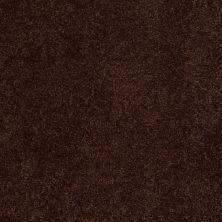 Anderson Tuftex Ravishing Chestnut 00778_Z6866
