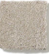 Anderson Tuftex True Inspiration Limestone 00552_Z6872