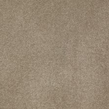Anderson Tuftex True Inspiration Driftwood 00753_Z6872