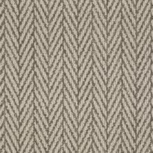 Anderson Tuftex Only Natural Windsor Gray 00758_Z6877