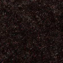 Anderson Tuftex Swag Dazzling Ebony 00559_Z6880