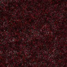 Anderson Tuftex Swag Raspberry Jam 00897_Z6880
