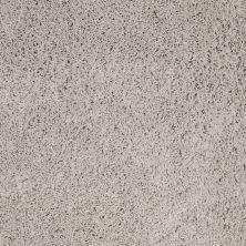 Anderson Tuftex Celeb Soft Dove 00512_Z6881
