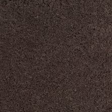 Anderson Tuftex Celeb Dreamy Taupe 00576_Z6881