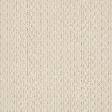 Anderson Tuftex Splendid Moment Brushed Ivory 00111_Z6883