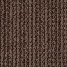 Anderson Tuftex Classics Splendid Moment Kola Nut 00776_Z6883