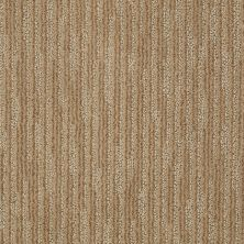 Anderson Tuftex Classics Subtle Touch Gentle Earth 00723_Z6885