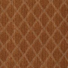 Anderson Tuftex Classics Sonora Brandy 00675_Z6886