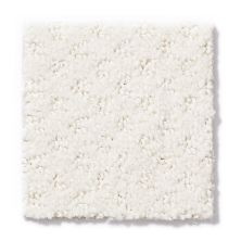 Anderson Tuftex Mar Vista Alpine Lace 00101_Z6899