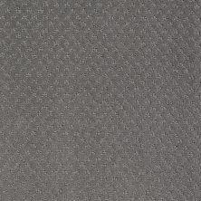 Anderson Tuftex Classics Mar Vista Pewter 00557_Z6899